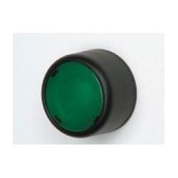PPRN2 surunupp, roheline