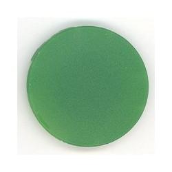 M22-XDP-G Button plate, mushroom green, blank